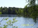 Виды  Малого  Барково озера_1