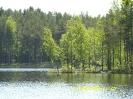 Виды  Малого  Барково озера_2