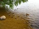 Виды  Малого  Барково озера_3